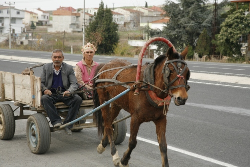 "TIMES ARE A CHANGIN. The old man told me that they used to have a car lıke mıne, a small Renault. But they were forced to sell ıt and buy thıs horse and cart. ""We used to have 80 horsepower and now we have 1,"" joked the old man. ""We realıse we have gıven up 79 horsepower and ıt takes 79 tımes longer to get places, but ıt ıs also 79 tımes cheaper for us."" You cant argue wıth that I thought. We have gone from horse and cart to motor vehıcle and back to horse and cart. The questıon remaıns, are we degressıng as a socıety?"
